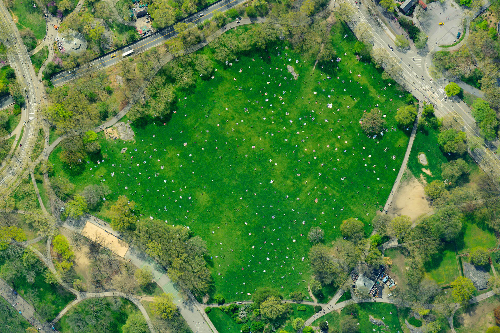 Central Park's Sheep Meadow filled with Sunbathers on the Beautiful Spring Day