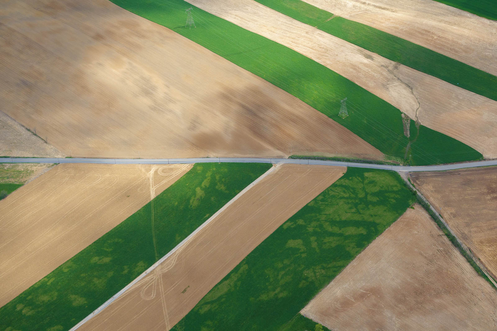 Lined up with pretty fields