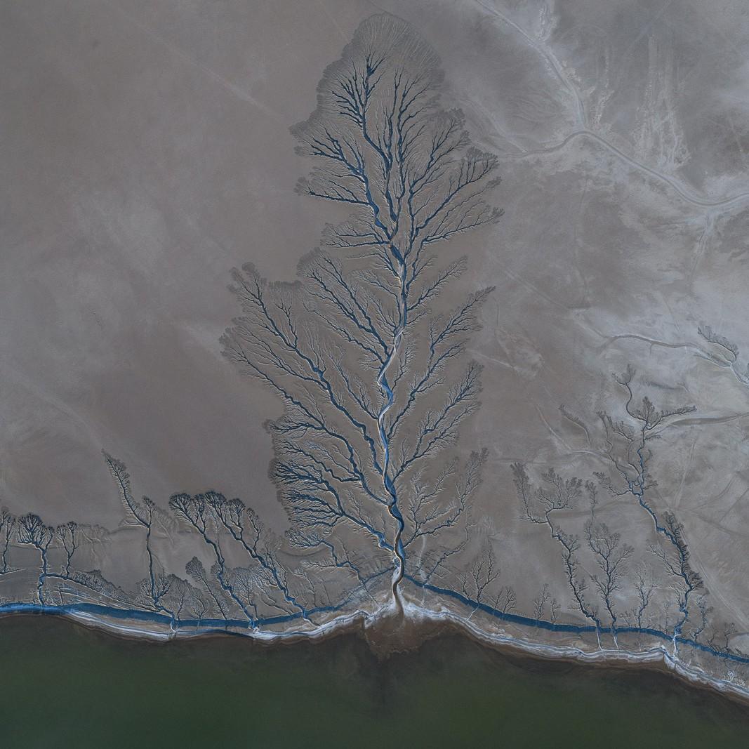 Water Creek, California